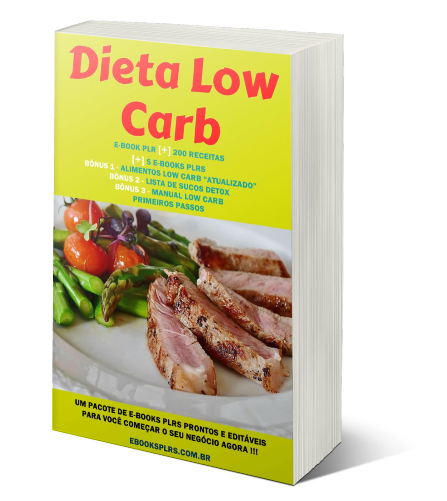 ebook plr nicho low carb